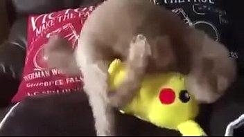 perrito violando a pikachu